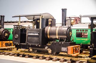 Model Steam Trains-17