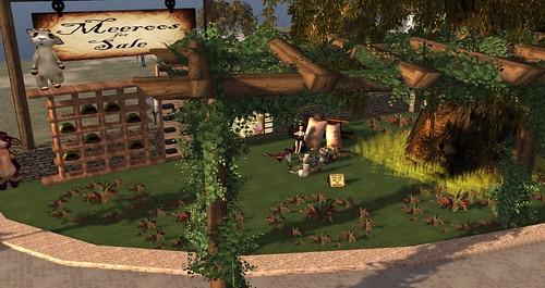 My Meeroo garden on the roof