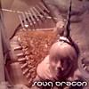 Souq Dragon cover