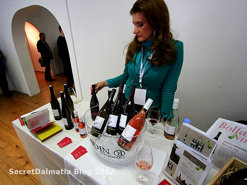 Mrs. Ujević explaining the mission of Bolfan wines