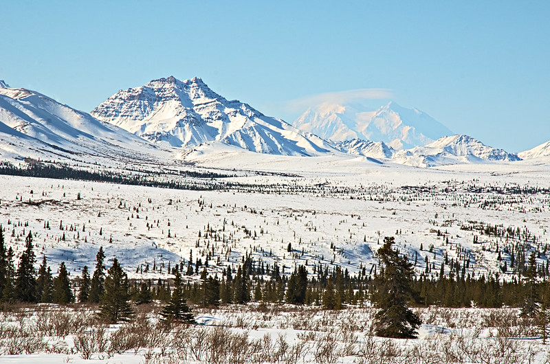 Double Mountain and Denali