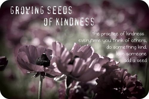 seeds of kindness