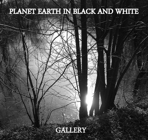 PLANET EARTH IN BLACK AND WHITE group now has its own gallery. NEW UPDATES.