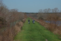 Riding on the Dike