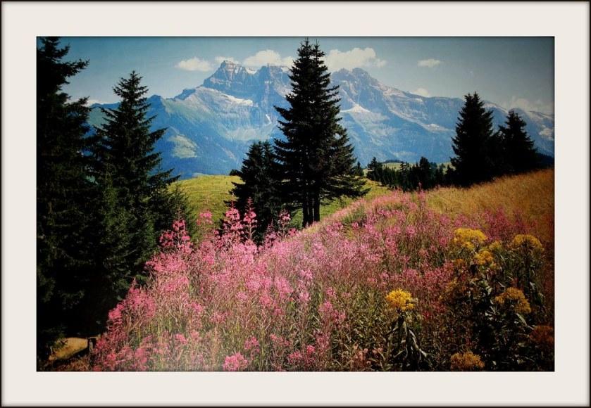France - Alpes