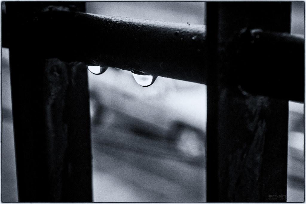 2012-02-16: Dos gotas de lluvia