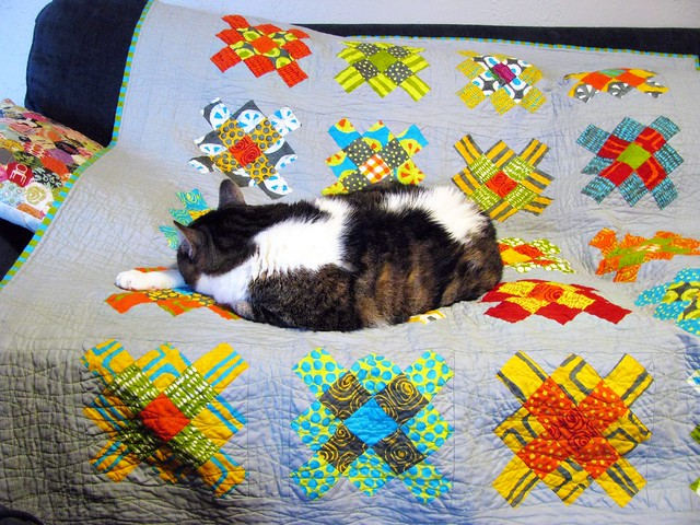 Cat on a Quilt, Already