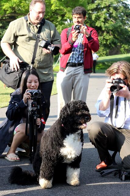 White House Garden Tour 2012