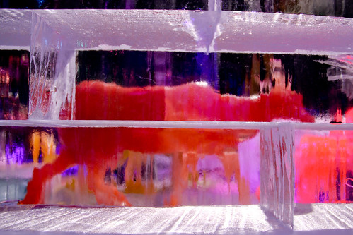 Animal through ice wall