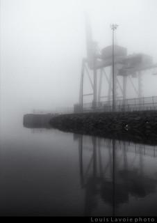 Vive la brouillard pour faire de belles photos (6/6)