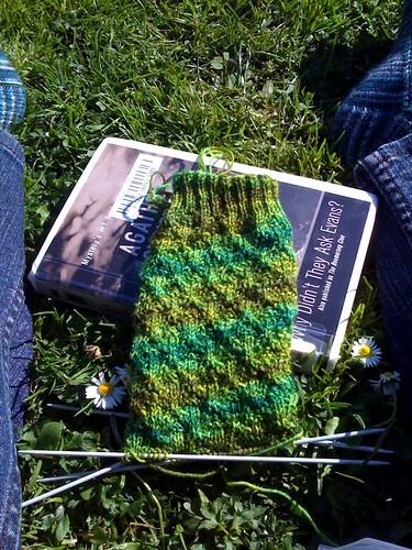 Sock in the park