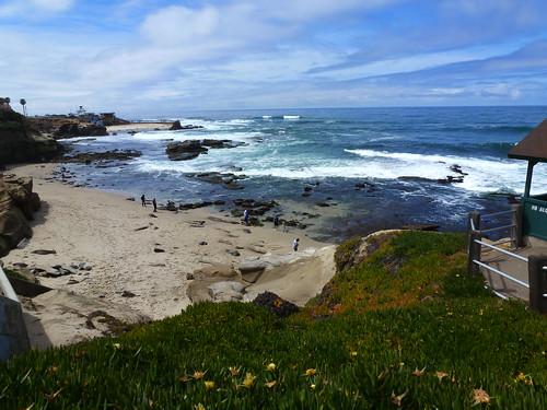 CA - SD  3-19-12 003 Shell Beach