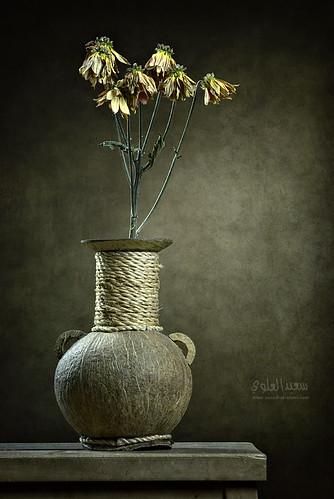 عمل صورته من شويه ، طازة بتاريخ اليوم  :) by Saeed al alawi