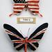 Butterflies - Type Z Type S, Gavin J R 2012