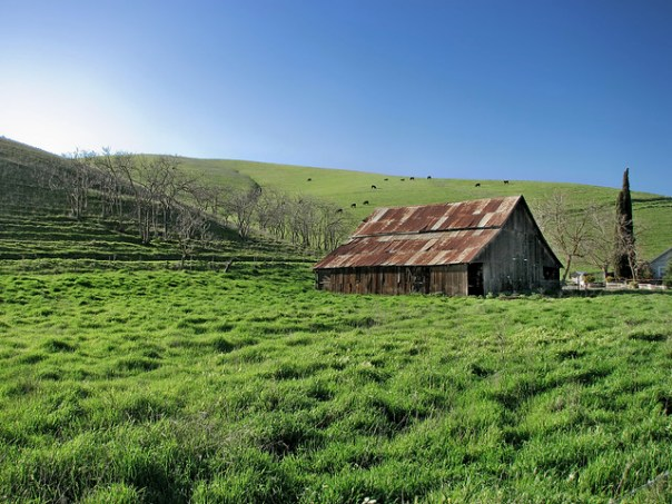 'Back Behind the Barn' - Livermore, California U.S.A. - March 19, 2009