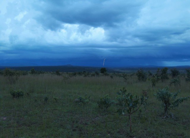 Lightning storm in the distance. It mvoed over to me fast! 31mm overnight.