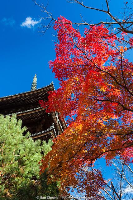 京都仁和寺