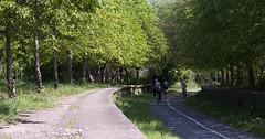 Mangotsfield Junction