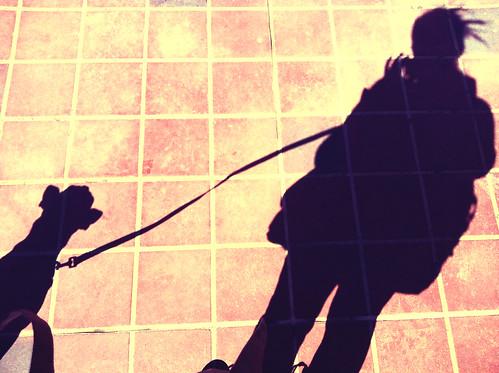 FX PhotoStudio Image
