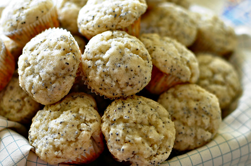 Poppyseed Lemonade Muffins