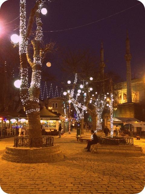 2012_0105_Turkey_Istanbul (15)