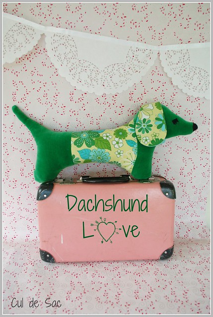 eco-friendly dachshund
