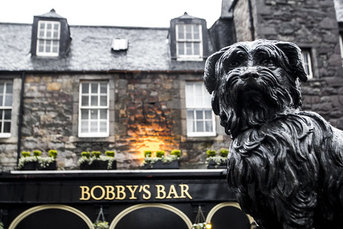 Bobby's Bar, haggis, scottie dog, Edinburgh, Scotland, bar, haggis, Nellu Mazilu