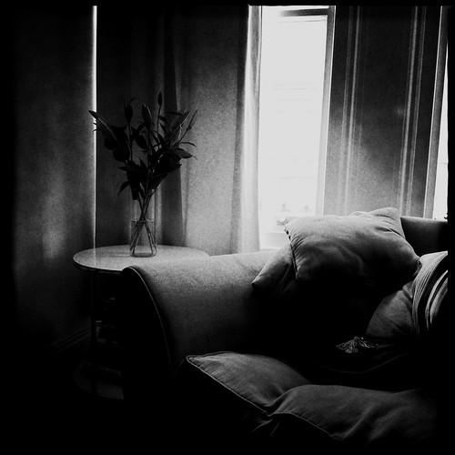 Still life by Darrin Nightingale