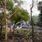 03 Viajefilos en Laos, Bolaven Plateau 110