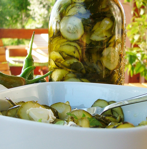 Pickled Zucchini - Zucchini sotto olio