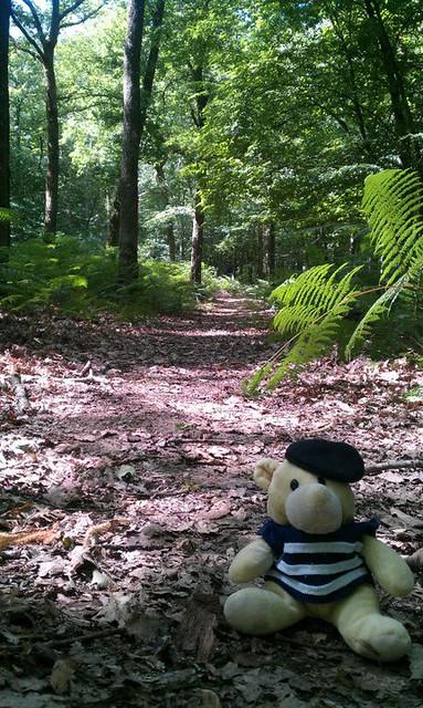 At Parc Naturel de Boutissaint