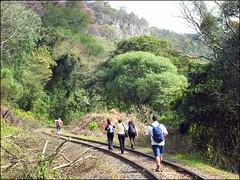 319ª Trilha Estrada de Ferro + Serra do Pinhal - Santa Maria RS_03