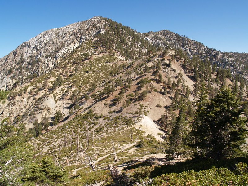 The saddle between Telegraph Peak and Timber Mountain on the Three Tee's Trail