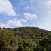 Kingfisher Canyon-061