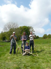 Bradwell Orchard Group scythe course