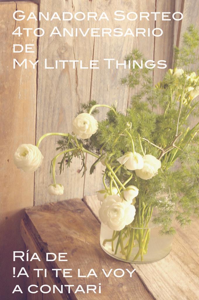 resultado sorteo 4to aniversario mylittlethings