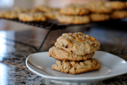 Oatmeal cookies with butterscotch and walnuts