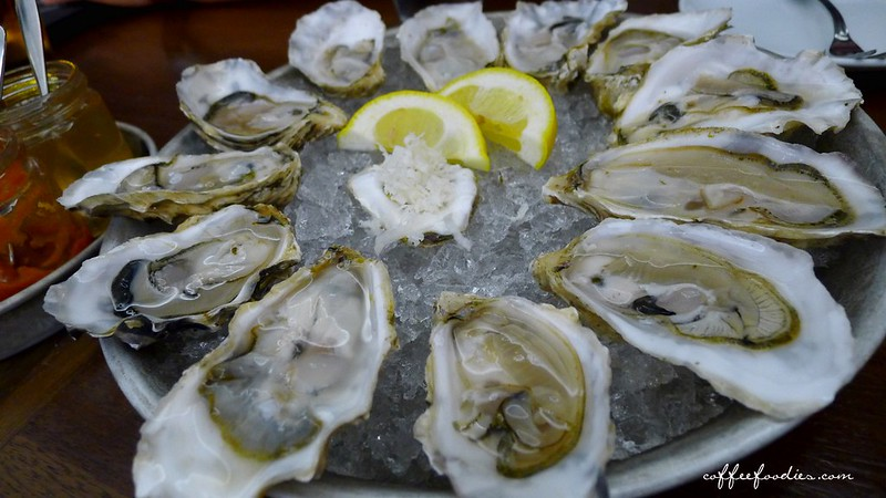 Oyster 00003