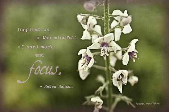 Inspired Focus or Focused Inspiration