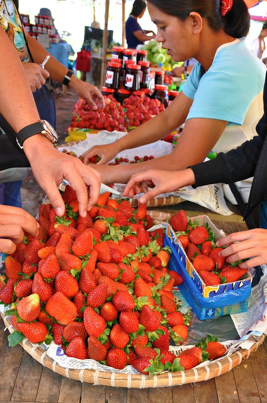 Strawberry Market