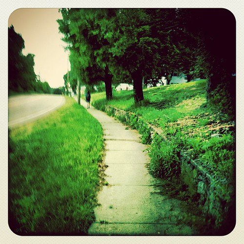 The path home