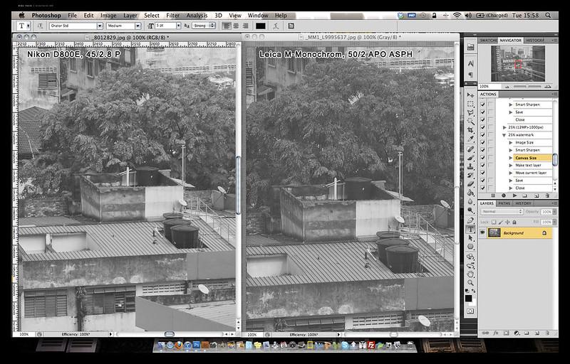 MM vs D800E 1 copy