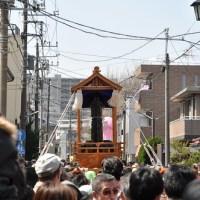 【Photo】かなまら祭2012。【閲覧注意】