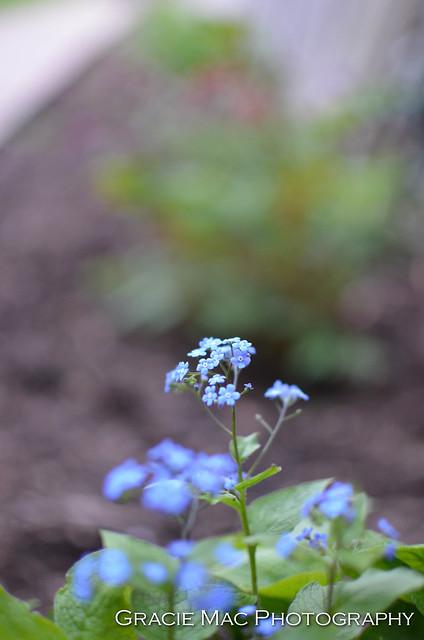 1204_spring_019