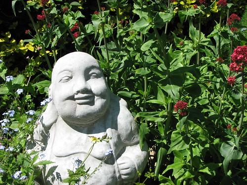 fat buddha enjoys the flowers