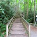 Winding Staircase to Mingo Falls
