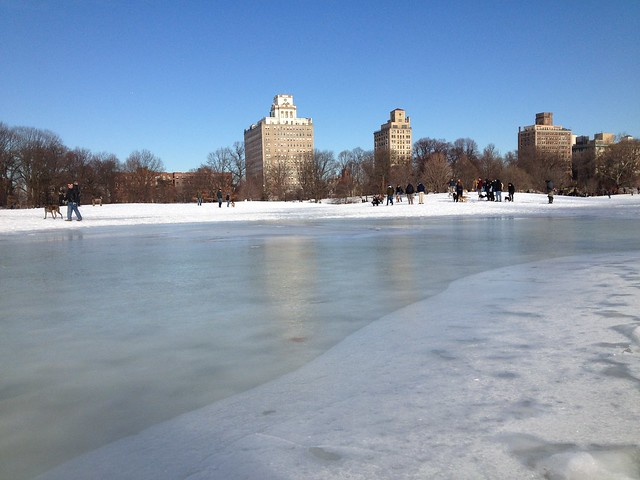 A frozen sheet of water in Prospect Park....back in February, I think.