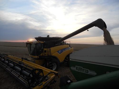 James unloading at sunset
