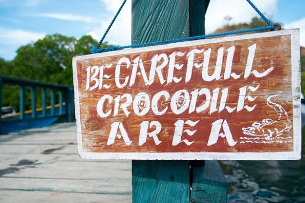 Crocodile Area. Rinca Island, Komodo