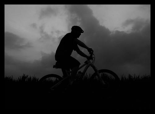 riding through the long grass by rOcKeTdOgUk